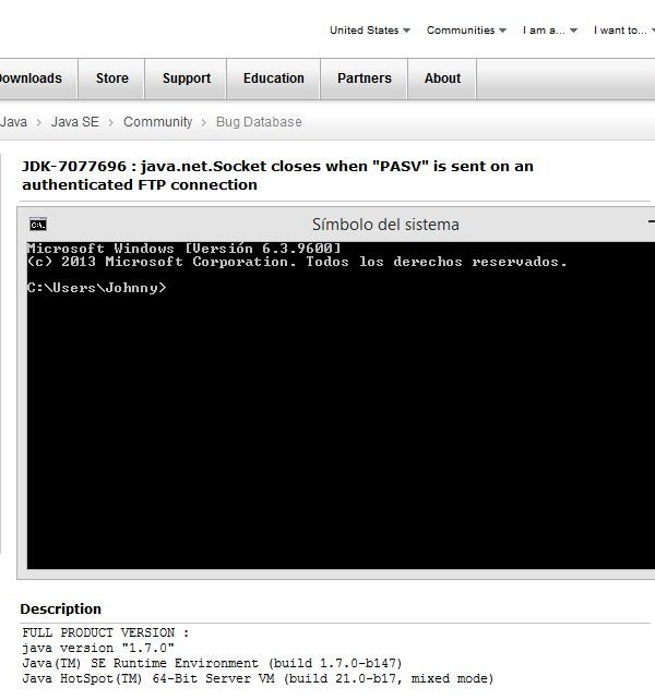 Netbeans, JRE7 FTP y problemas con Windows firewall